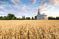 Rural landscape with wheat field and a church in Turiec region, central Slovakia. .