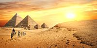 Camel Caravan and the Pyramids of Giza in Egypt.
