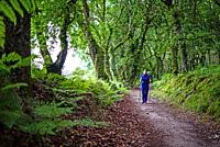 Young female pilgrim walking the Way of Saint James (Camino de Santiago), Galicia, Spain.