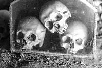 Skull in Fontanel cemetery, Naples Italy.