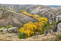 Parque Natural Barranco del Río Dulce. Pelegrina. Guadalajara Province, Castile-La Mancha, Spain.