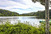 lake Windgfällweiher, High Black Forest, Stausee, small bariier lake between Titisee and Schluchsee, Germany.