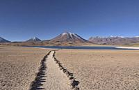 Beautiful Lake Miscanti on the altiplano, Atacama Desert, Chile.