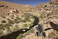 Hiking along the Rio Blanco thermal river near El Tatio Geyser, San Pedro de Atacama, Chile.
