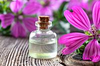 A bottle of mallow essential oil with fresh malva sylvestris flowers.