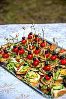 Beautifully decorated catering banquet table for wedding. Catering service buffet plate with canapes and appetizing sandwiches. Buffet catering table ...