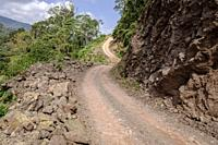 Reserva de Biosfera Visis Cabá, Zona Reina, Quiche, Guatemala, America Central.