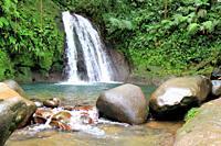 Crawfish waterfall, Guadeloupe National Park, Guadeloupe, Caribbean Islands, France.