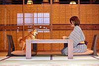 Japanese woman and Shiba Inu dog at traditional hotel