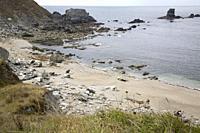 Carro Beach in Galicia; Spain;.