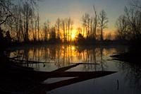 St Louis Ponds sunrise, St Louis Ponds Wildlife Area, Marion County, Oregon.