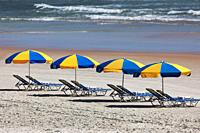 parasols row on the beach.