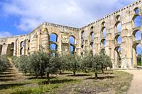 Olive trees and Amoreira Aqueduct, Garrison Border Town of Elvas and its Fortifications, Portalegre District, Alentejo Region, Portugal, Europe.