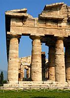Greek temple, Temple of Neptune in Paestum, Campania, Italy, Europe.