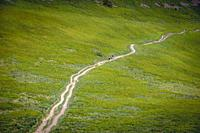 Trail on a Wetlina High Mountain Pasture in Western Bieszczady Mountains in Poland.