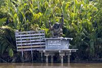 Asia, Indonesia, Borneo, Tanjung Puting National Park, Sekonyer river, Sekonyer village, entrance of the National Park with an orang utan statue.