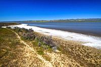 Soda Lake and the Temblor Range, Carrizo Plain National Monument, California USA.