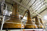 Stills inside still room Room at Lagavulin Distillery on island of Islay in Inner Hebrides of Scotland, UK.