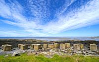 Aerial view of Second World War era anti-tank blocks on shore at Gosford Sands at Longiddry in East Lothian, Scotland, UK.