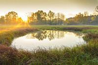 Pond at sunrise, Autumn, Hesse, Germany, Europe.