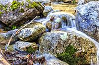 Solana Toro stream in Iruelas Valley. Sierra de Gredos. Avila. Spain. Europe.