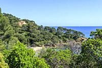 France, Var, Rayol Canadel sur Mer, the Domaine du Rayol, Mediterranean garden, property of the Conservatoire du littoral, Villa Rayolet and the Point...