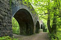 The railway viaduct in Leigh Woods near Bristol, North Somerset, England.