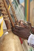 Kora Instrumento musical Senegal detail