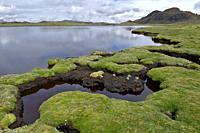 A orillas de la hermosa laguna andina ubicada a más de 4000 metros sobre el nivel del mar. Pureza y tranquilidad. Huancavelica - Perú