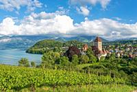 Spiez castle on lake Thun, Spiez, Bernese Oberland, Switzerland, Europe.