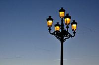 Street lamp and flock of birds. Armería Square, Madrid.