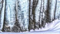 Ice details of Paulabreen, Van Mijienfjorden, Spitsbergen, Svalbard.