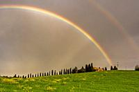 Rainbow over cypresses in Orcia valley, San Quirico d'Orcia in Siena province, Italy, Tuscany.