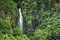 Wailua Falls, Kipahulu District, Hana Coast, Maui, Hawaii. .