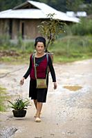 Woman from The Black Hmong Hill Tribe in Sa Pa, Lao Cai Province, Vietnam.