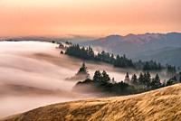 Coastal fog below Mount Tamalpais at Sunset Marin County CA USA.