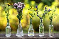 Calendula, oregano, St John's wort, hyssop and mountain savory in glass bottles, outdoors.