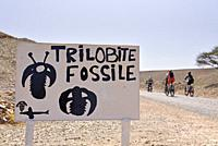 sign indicating the sale of fossils and bike riders in a palm grove village near Agdz, Draa River valley, Province of Zagora, Region Draa-Tafilalet, M...