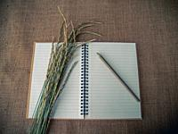 Vintage style. Organized desk with open notebook, pencil, dry grass and burlap background.