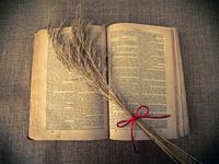 Vintage style. open antique book with dry grass and red thread with burlap background.