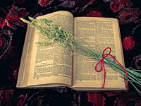 Vintage style. open antique book with dry grass and red thread with floral background.