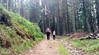 Mother and son climb the mountain road up hill holding hand Woman with backpack and child walking in forest nature.