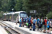 France, Corsica, Vizzavona forest railway station