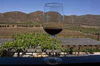 Effect of refraction in glass containing red wine in an open-air wrestling towards the mountains and fields planted with vines.