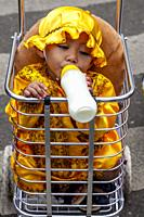 A Child Sits In A Trolley With A Bottle Of Milk During The Fluvial Procession, Dinagyang Festival, Iloilo, Panay Island, The Philippines.