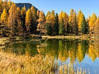 Lago San Pellegrino (Lech de San Pelegrin) during fall at Passo San Pellegrino in the Dolomites. Europe, Central Europe, Italy.