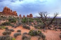 Arches Nat. Park, Moab, Utah, United States.