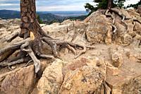 Boulder, Chautauqua, Colorado, United States.