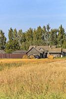 Rural landscape, Vladimir region, Russia.
