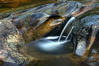 Long exposure of water flowing in a small cascade on Little River - Corn Mill Shoals Trail, DuPont State Recreational Forest, Cedar Mountain, North Ca...